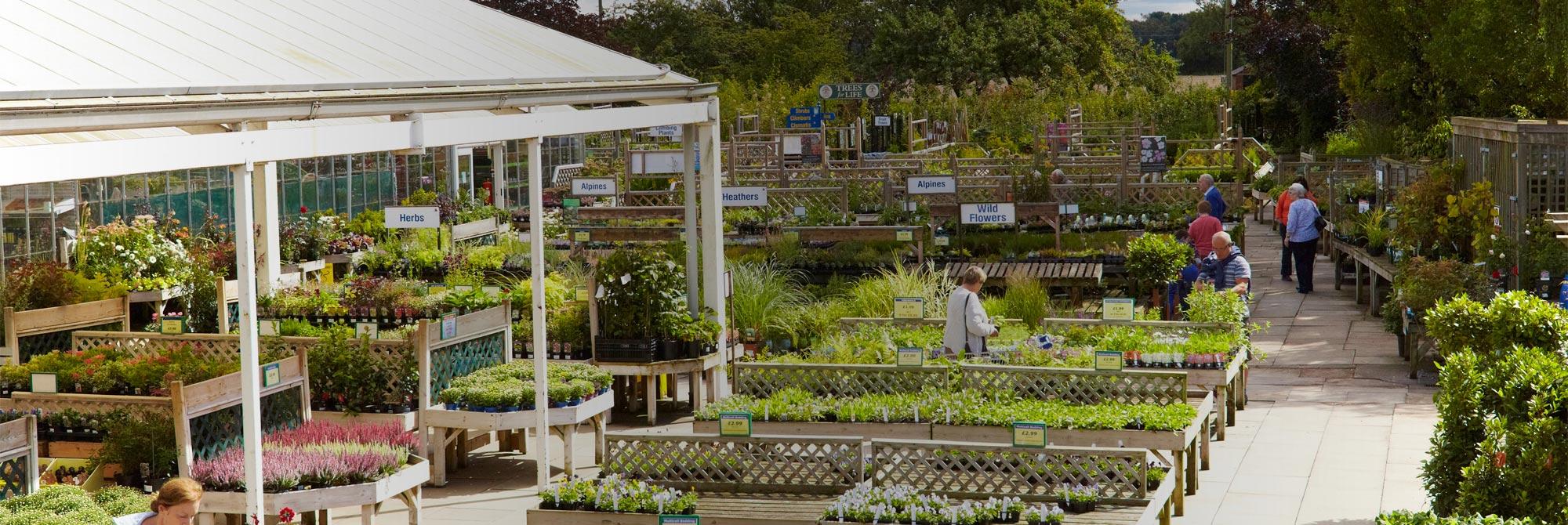 York Garden Centre - Dean\'s Garden Centre